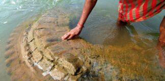 Descoperire istorica dupa inundatii. Comoara veche de sute de ani