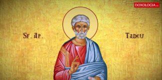 Calendar ortodox vineri 21 august. Ce sfant mare este praznuit