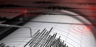 cutremur romania 29 august 2020 bucuresti vrancea brasov galati braila