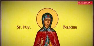 Calendar ortodox joi 8 octombrie. Ce sarbatoresc romanii astazi
