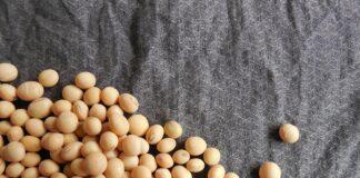 Ce se intampla daca mananci soia, alimentul preferat al romanilor in post. Cand devine toxica pentru organism