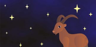 Horoscopul saptamanii 16-22 noiembrie 2020. Zodiile care primesc bani in plus