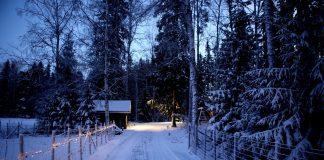 Prognoza meteo pentru Craciun si Revelion: 7 decembrie - 4 ianuarie. Cum va fi vremea de Sarbatori