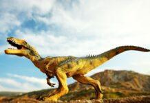 O piele de rara de dinozaur fosilizat ne dezvaluie pentru prima data cum aratau cu adevarat celebrele carnivore