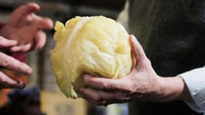 Cea mai bună varză murată, secretul localnicilor din Milișăuți. Rețeta perfectă, doar aici se face așa