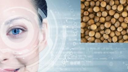 Alimentul din bucătărie care îți protejează ochii de boli. Românii greșesc grav când îl ignoră