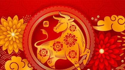 Horoscop 2021, anul Bivolului de Metal. Ce lucruri bune ne aduce acest semn chinezesc